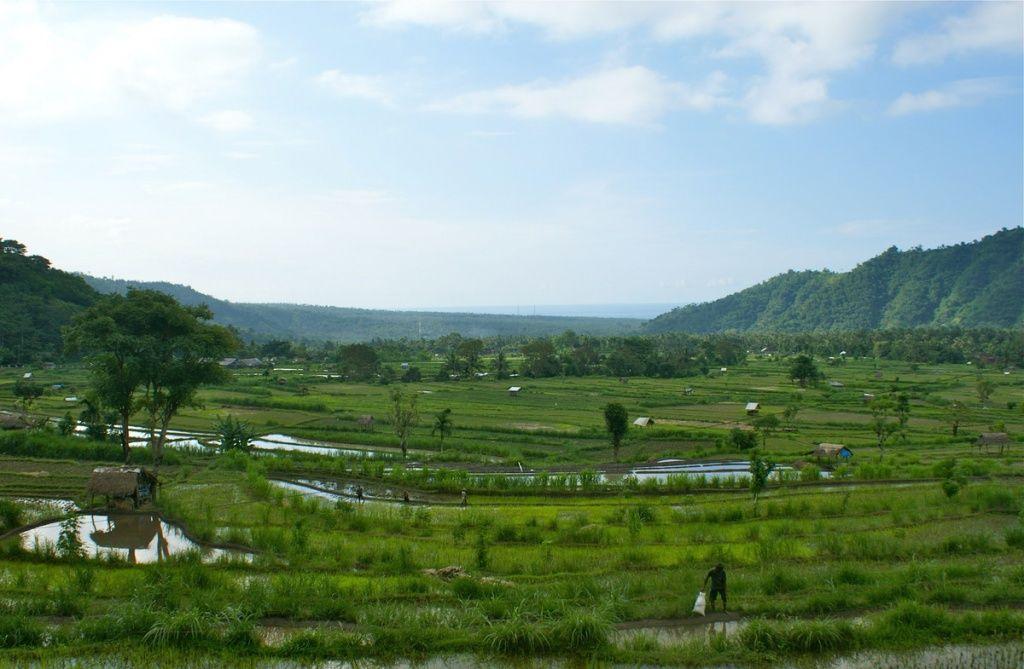 16. Amed Bali-I-Love-Villa.jpg
